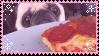 Aesthetic Pizza Pug by TRASHYADOPTS