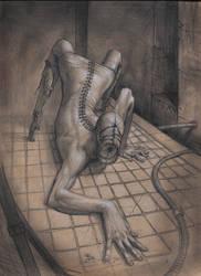 Arachnid 2 by Mavros-Thanatos
