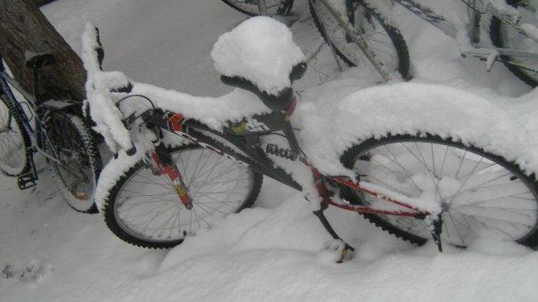 Winter wonderland on a bike.