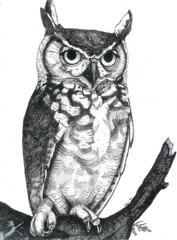 great horned owl by mjriddle on deviantart
