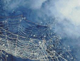 Spiderweb by triye
