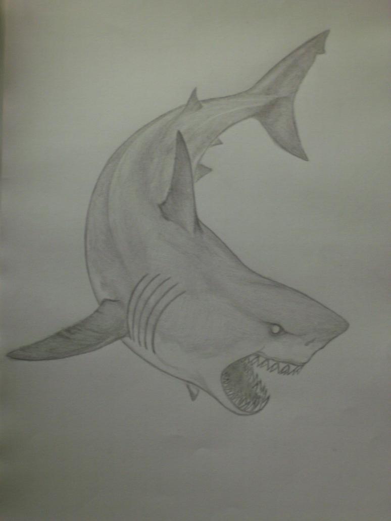 Great White Shark sketch #3 by Serpentrinity