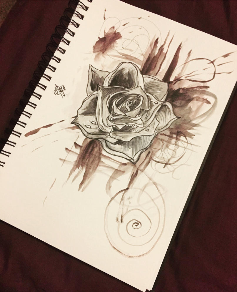 Splattered rose  by norler