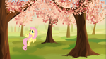 Fluttershy in a cherry garden