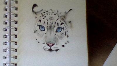 Snow Leopard by Haydyne123