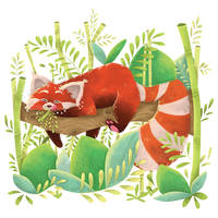 R for Red Panda by hannahv92