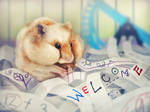 Hamster Welcome