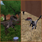 Zoo Tycoon 2 Showcase: Velociraptor