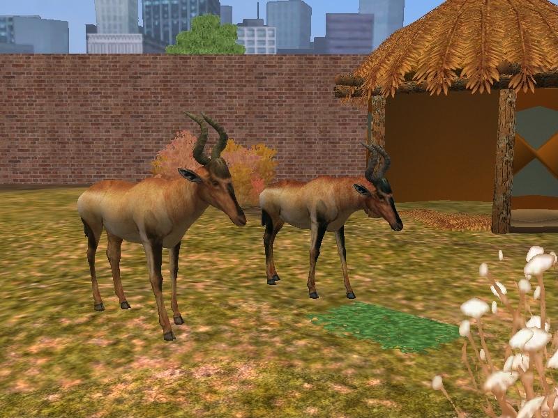 Try These Zoo Tycoon 3 Animals {Mahindra Racing}
