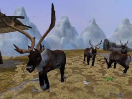 ZT2 Showcase - Barren-Ground Caribou