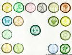 Runes of Earth