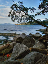 Victoria Shores by midnightstouch