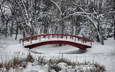 Winter Wonderland by midnightstouch