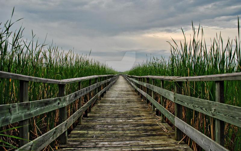 Grassy Narrows