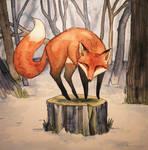 The Adventurous Fox