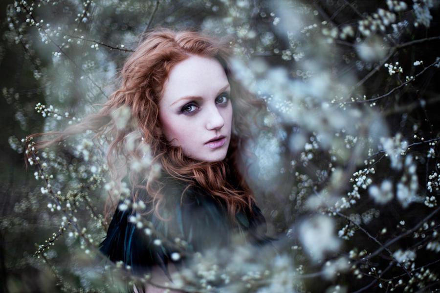 Силфида Дуфасие Raven_heart_by_curcabeata-d3cf00s