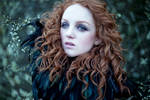 Raven Heart 2 by curcabeata