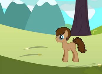 Myself As A Pony