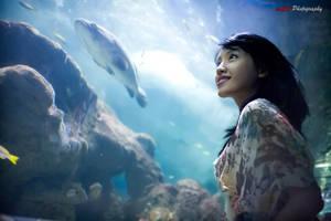 Sea World by paten
