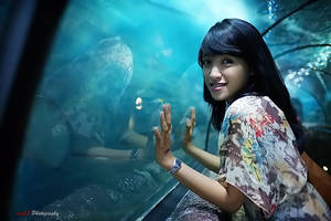 Sea World2 by paten