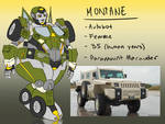 Montane (Finished!)