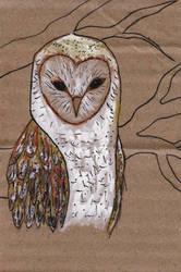 owl II by rwertz
