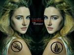 Divergent Tris Prior Wallpaper