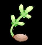 Okane Plant by KatyaHam