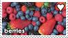 Berries by WaywardSoothsayer