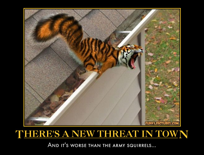 tiger squirrel demotivational by Weirddudeguy