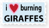 I Heart Burning Giraffes by vanilla-vanilla