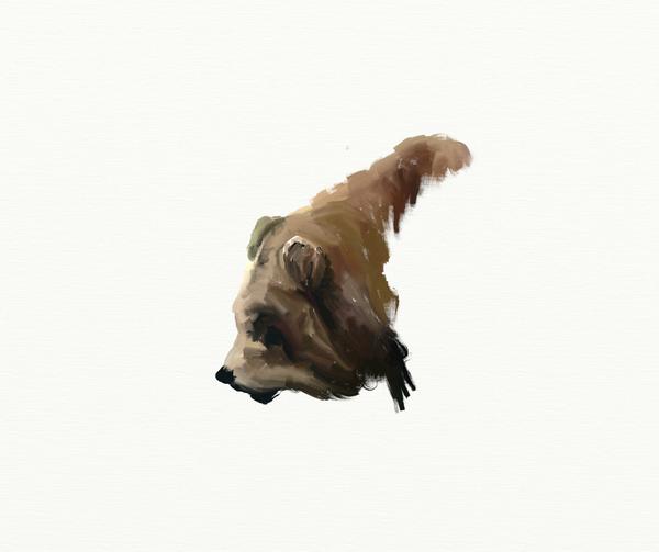 Bear by starduskmoon