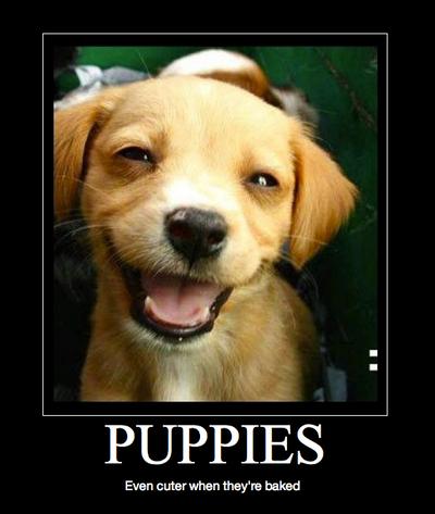 Good Demotivational Images Baked_Puppy_by_ShoujouhiKarasu