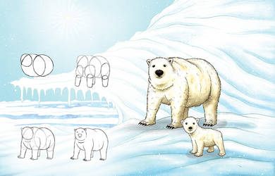 Learning to draw animals - Polar Bear