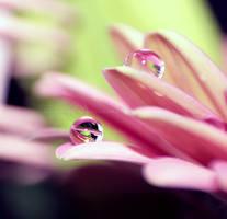 Pink mess by LaZiaIla