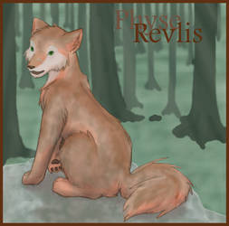 Revlis for James