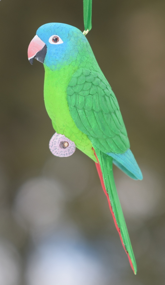 Blue Crown Conure Carving by greencheek