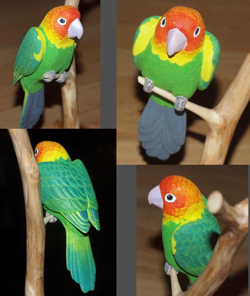 Carolina Parakeet by greencheek