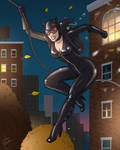 Catwoman at work by JericaWinters