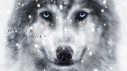 Winter and Wolf