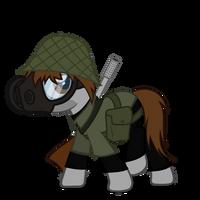 Sturmpony anth. pt2 -  Griffon-Pony border clashes by MisterAibo