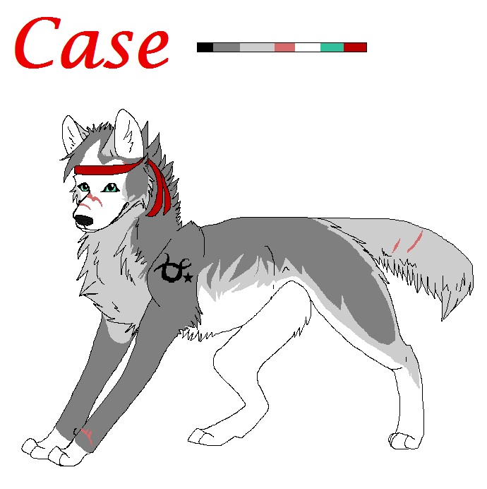Case Ref by WolfStarr7