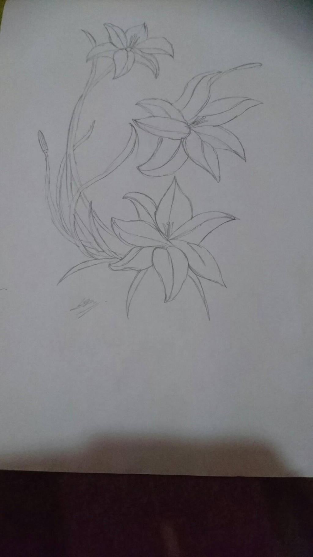 Flowers by SuhaiCo