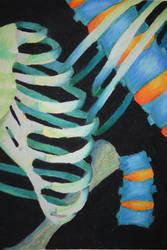 Bones by ShayCarty