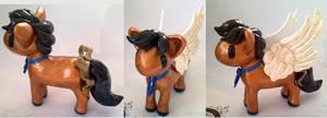 Cas Pony Take 2