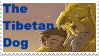 The Tibetan Dog Fan Stamp by DragonHeartLuver