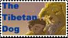 The Tibetan Dog Fan Stamp by DragonHeartLuver