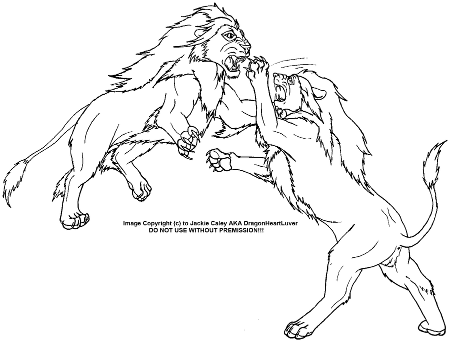 Line Art Vs Painting : Lion s fighting lineart by dragonheartluver on deviantart