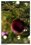 Christmas by Reto