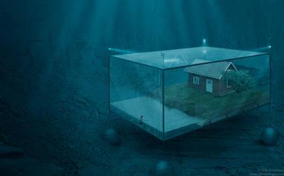 Aqua custodia